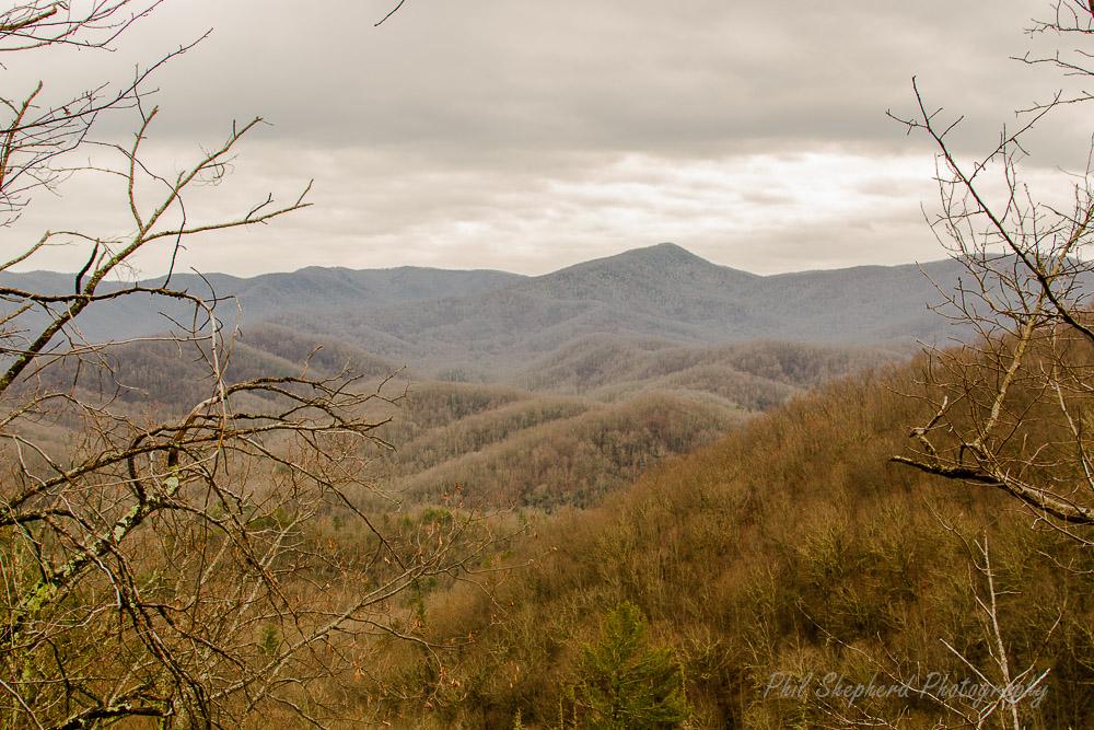 Laurel Trail View pSp