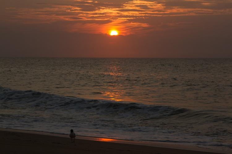 Sunrise_pSp
